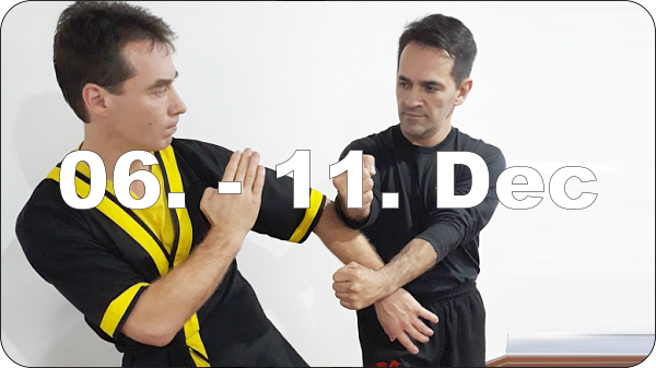 DRAGOS WING TSUN INTENSIVE DAYS BRASILIA - BRASIL