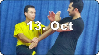 DRAGOS WING TSUN WE-SEMINAR HAMBURG - Germany