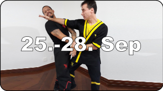 DRAGOS WING TSUN INTENSIVE DAYS VILLINGEN- SCHWENNINGEN - Germany